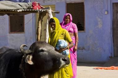 India_37