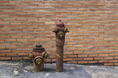 Llevadores de agua_8