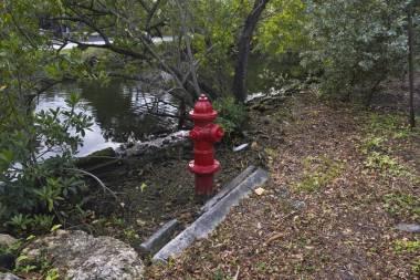 Llevadores de agua_36