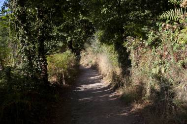El Camino de Santiago_19