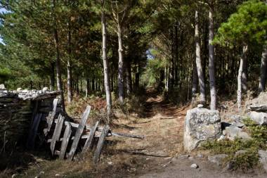 El Camino de Santiago_52
