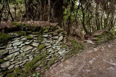 El Camino de Santiago_54