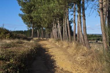 El Camino de Santiago_100