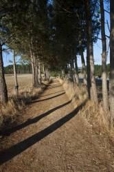 El Camino de Santiago_102