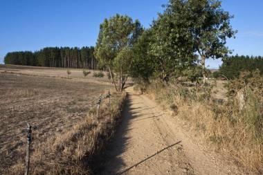El Camino de Santiago_103