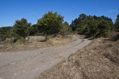 El Camino de Santiago_124