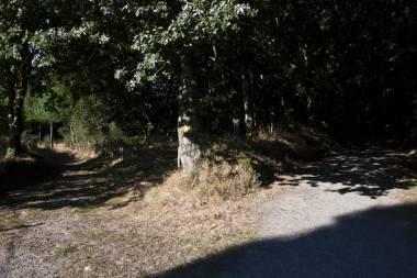 El Camino de Santiago_141