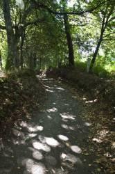 El Camino de Santiago_156