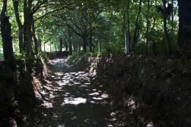 El Camino de Santiago_158