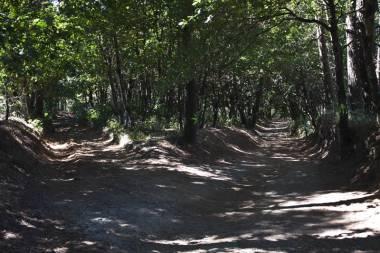 El Camino de Santiago_181