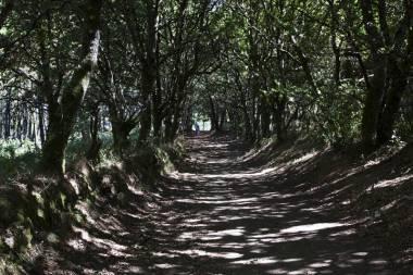El Camino de Santiago_183