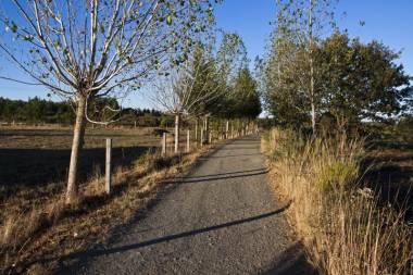 El Camino de Santiago_189