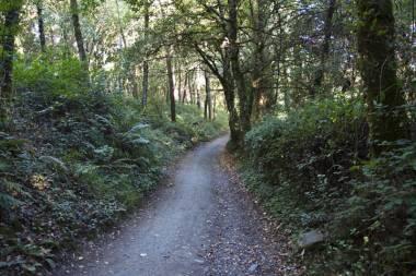 El Camino de Santiago_194