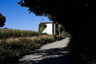 El Camino de Santiago_206