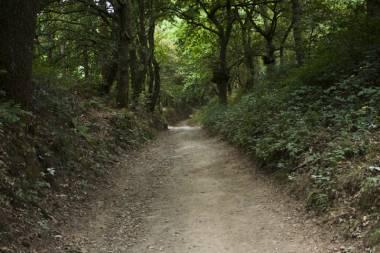 El Camino de Santiago_227