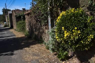 El Camino de Santiago_243
