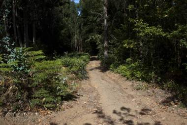 El Camino de Santiago_245