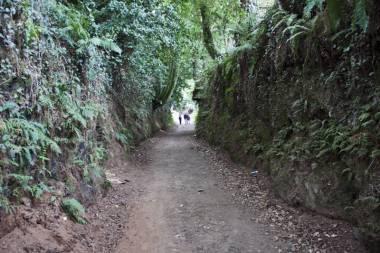 El Camino de Santiago_120