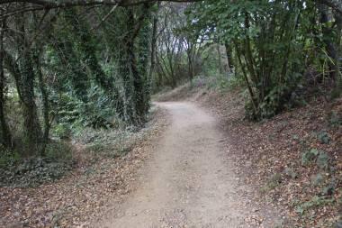 El Camino de Santiago_116