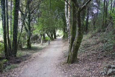 El Camino de Santiago_115