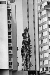 Caracas_30