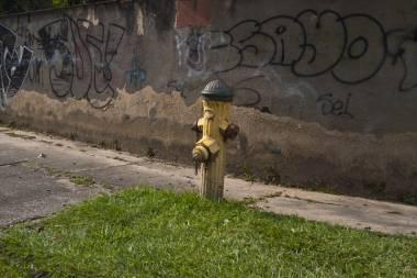 Llevadores de agua_11