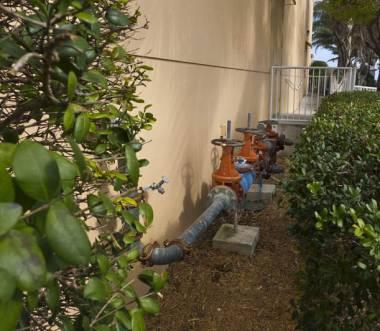 Llevadores de agua_30