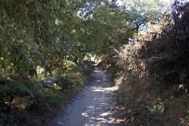 El Camino de Santiago_49