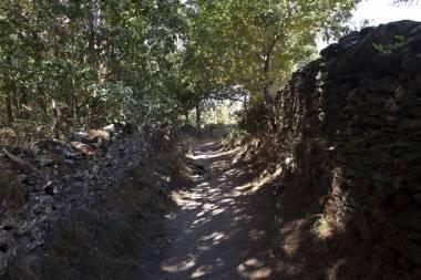 El Camino de Santiago_53