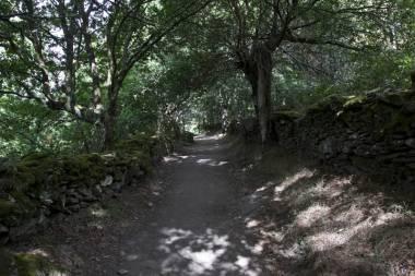 El Camino de Santiago_55