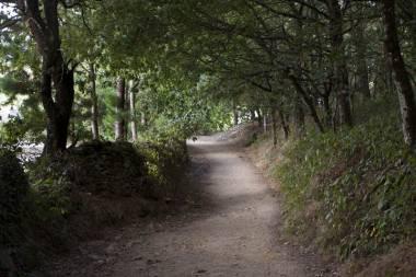 El Camino de Santiago_57