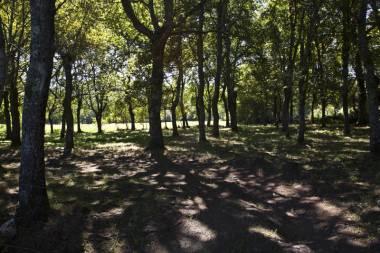 El Camino de Santiago_133