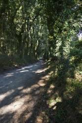 El Camino de Santiago_142