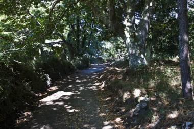 El Camino de Santiago_153
