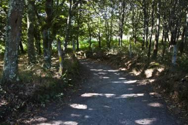 El Camino de Santiago_154