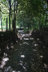 El Camino de Santiago_157