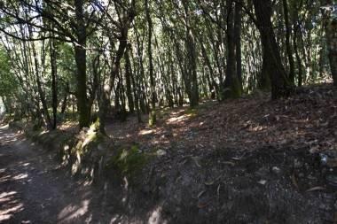 El Camino de Santiago_161