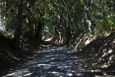 El Camino de Santiago_175