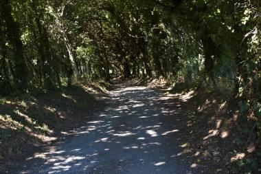 El Camino de Santiago_177