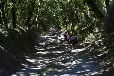 El Camino de Santiago_178