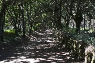 El Camino de Santiago_182