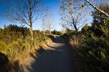 El Camino de Santiago_188