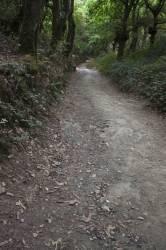 El Camino de Santiago_228