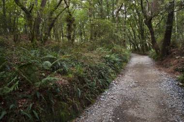 El Camino de Santiago_229
