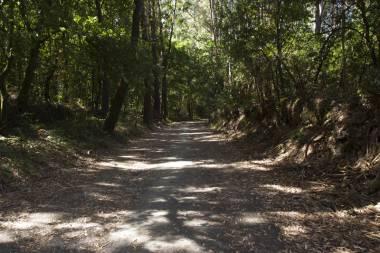 El Camino de Santiago_244