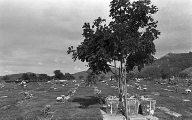Cementerios_64