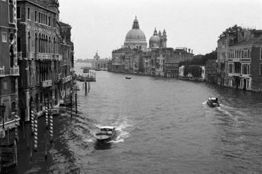 Venecia y Florencia