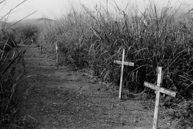 Cementerios_7